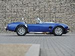 photo 17 Car AC Cobra Roadster (1 generation 1990 2001)
